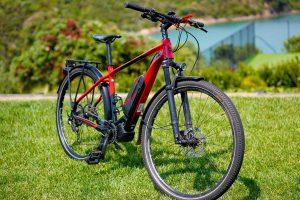 Tour Waiheke e-bike