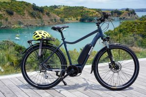 Standard e-bike